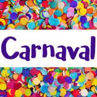 Pi no carnaval. Como foi o carnaval da Fabrícia?